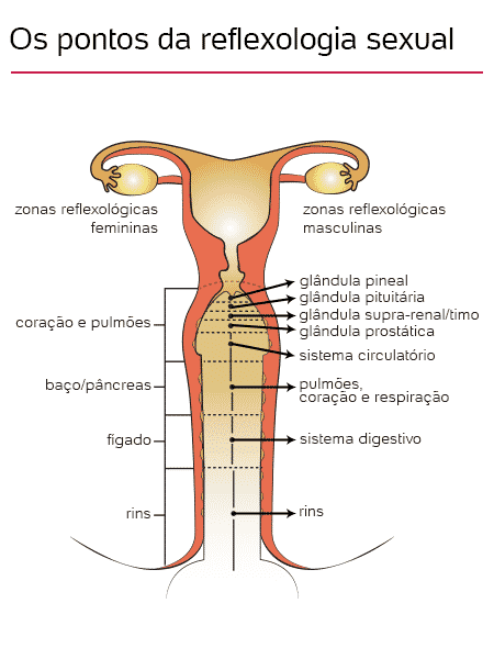 Os pontos da reflexologia sexual - UOL/ Jordana Hummel  - UOL/ Jordana Hummel