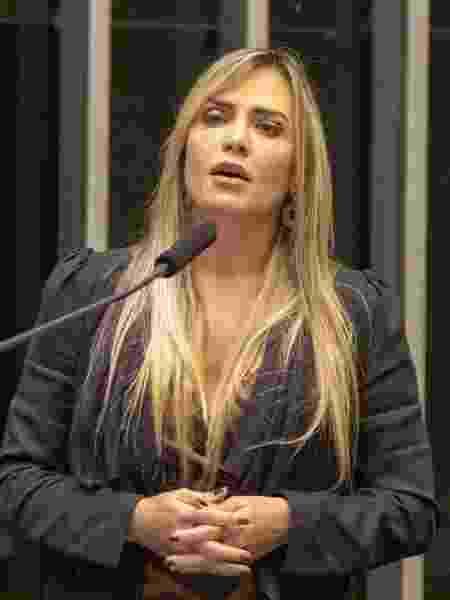 A deputada federal Celina Leão  - Edmundo Souza/Divulgação - Edmundo Souza/Divulgação