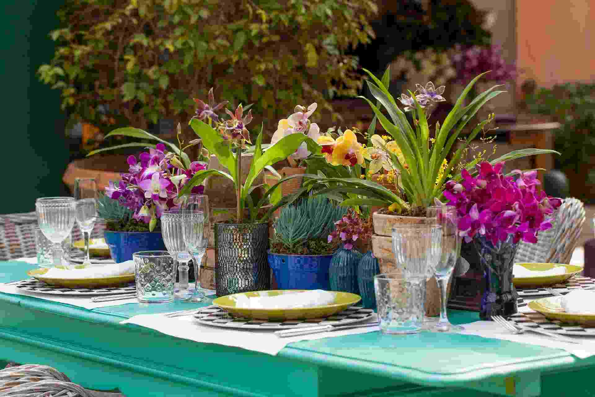 Vasinhos de diferentes tamanhos com suculentas e orquídeas variadas podem enfeitar as mesas de convidados ou aparadores. A alegre composição é da Bothanica Paulista - Julia Ribeiro/ Divulgação