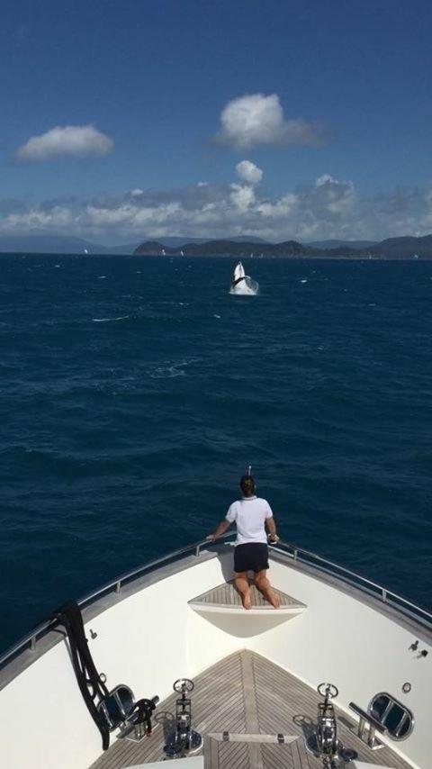 """""""Esta foto foi um momento muito especial que tivemos: cerca de nove baleias jubartes rodearam nosso barco por mais de uma hora. Estou vendo uma baleia bebê tentado dar o salto que, segundos antes, sua mae deu como se ensinando mesmo. Foi muito fofo e marcante"""" diz a brasileira Sabrina Nogueira"""