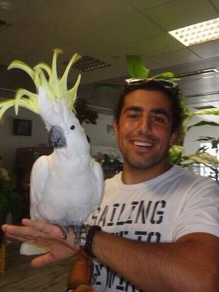 Kaysar já trabalhou com aves na Síria - Reprodução/Instagram