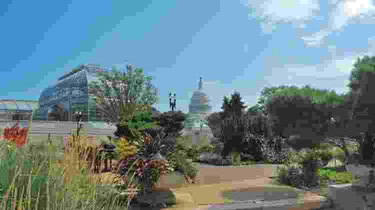United States Botanic Garden (EUA) - Divulgação - Divulgação