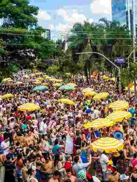 Um guia para curtir o carnaval numa boa e com disposição de sobra - Edson Lopes Jr./UOL