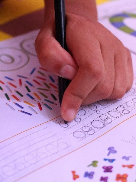 Regulamentação do ensino domiciliar será discutida na Câmara - Glória Maria/UOL