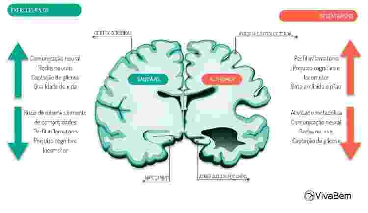 infográfico Alzheimer  - Paola Machado - Paola Machado