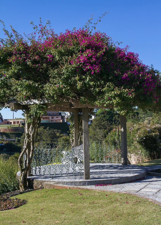 Veja ideias bacanas para renovar o visual do seu jardim - BOL Fotos ... 91124913e0790
