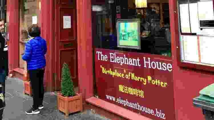 The Elephant House - Andrea Miramontes - Andrea Miramontes