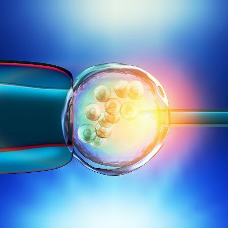 Fertilização in vitro é um dos serviços buscados pelas chinesas - iStock