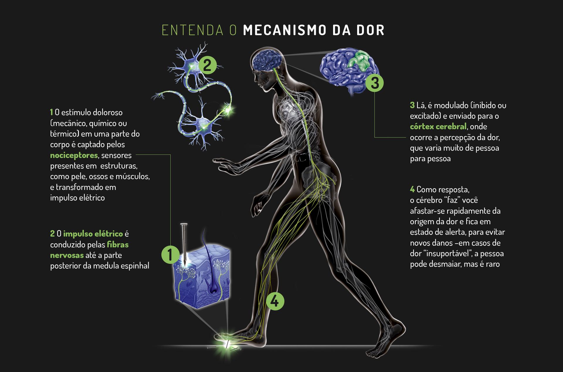 Cerebrais nos curando danos nervos