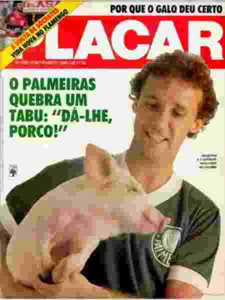 Palmeiras - Reprodução - Reprodução