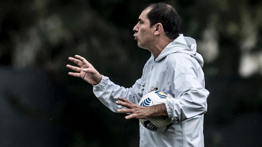 Carille comanda primeiro treino no Santos - Ivan Storti/Santos