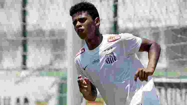 Pedro Ernesto Guerra Azevedo / Divulgação SantosFC