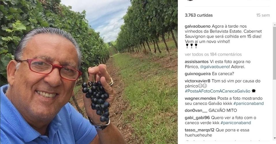O jornalista sempre coloca fotos no Instagram quando visita a fazenda, iniciativa comemorada por autoridades locais que gostam da exposição da região