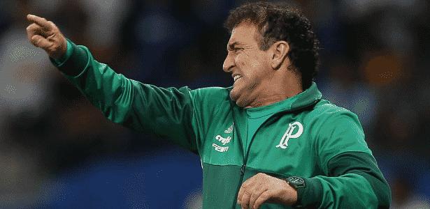 Palmeiras de Cuca é o líder do Brasileirão, com 22 pontos em 11 rodadas - Cesar Greco/Ag Palmeiras