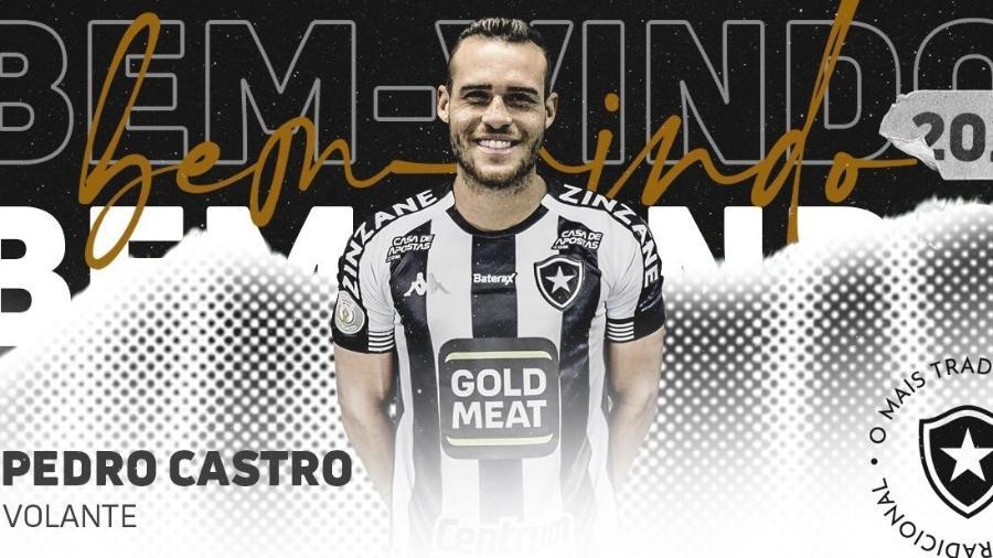 Botafogo anuncia contratação de Pedro Castro, ex-Avaí  - Instagram