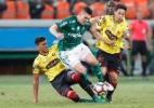 Willian, Mayke e Moisés treinam com bola e reforçam Palmeiras contra Chape - EFE/Sebastião Moreira