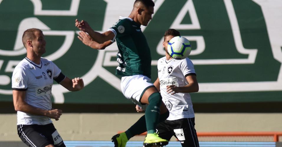 Goias x Botafogo em partida pelo Campeonato Brasileiro 2019