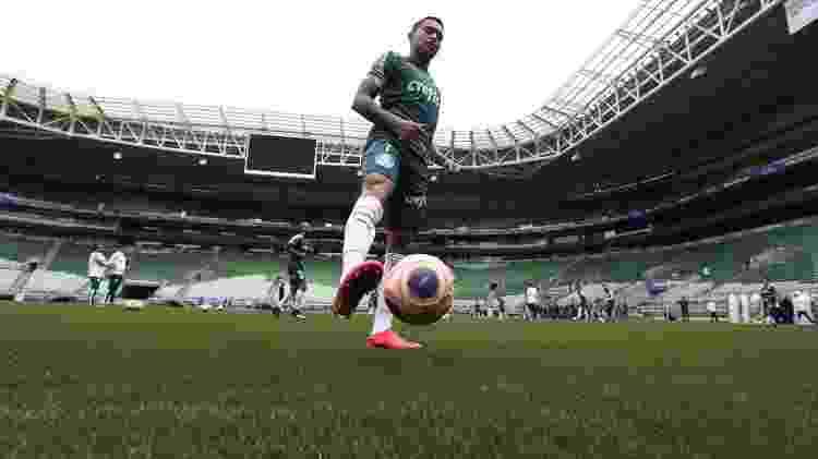Palmeiras treinou pela primeira vez no gramado na última quarta-feira (12) - Cesar Greco/Ag. Palmeiras