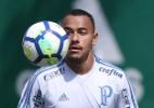 Torcida do Palmeiras esgota ingressos para final do Brasileiro sub-20