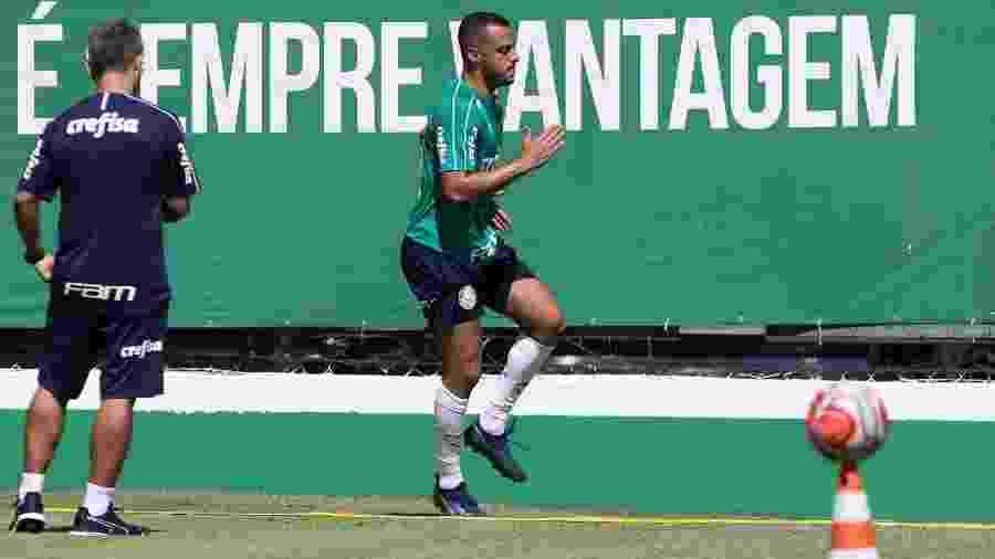 Palmeiras inscreve elenco do Paulista e 4 novidades na Libertadores ... 4e3304aaa99c2