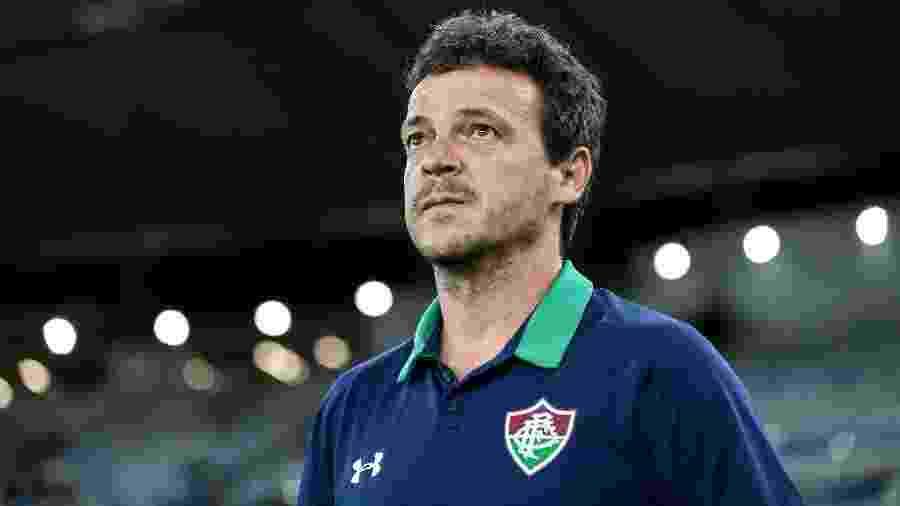 Fernando Diniz, técnico do Fluminense  - LUCAS MERÇON / FLUMINENSE F.C.