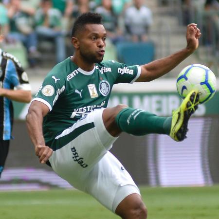 Borja, durante partida entre Palmeiras e Grêmio -  Bruno Ulivieri/AGIF