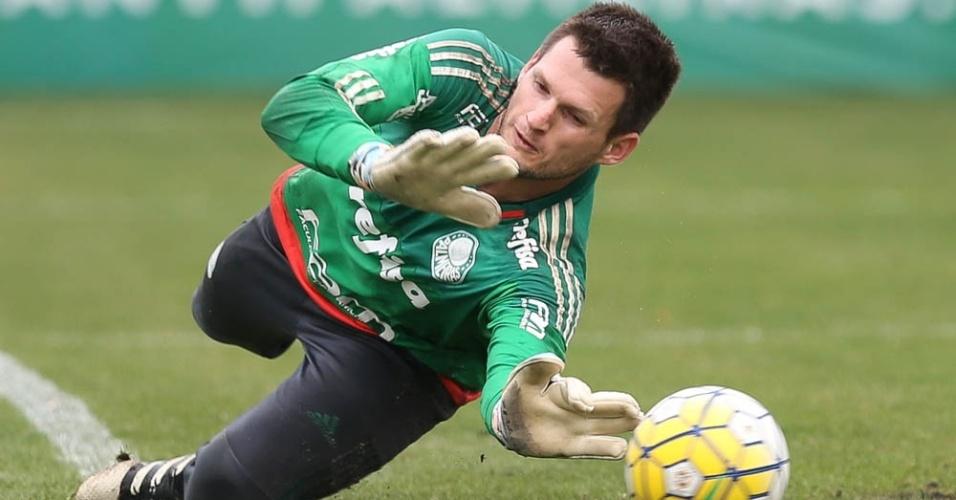 Vagner Palmeiras goleiro