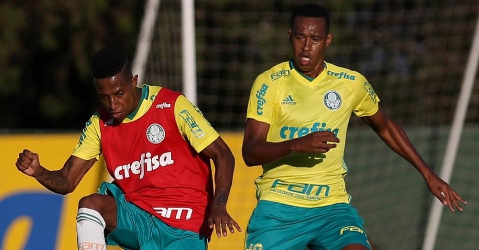 Tchê Tchê e Fabrício disputam bola em treino do Palmeiras na Academia de Futebol