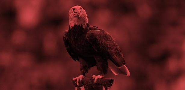 """Após ter documentos hackeados, as """"Águias"""" agora saem à caça judicialmente - ArteUOL sobre Clive Rose/Getty Images"""