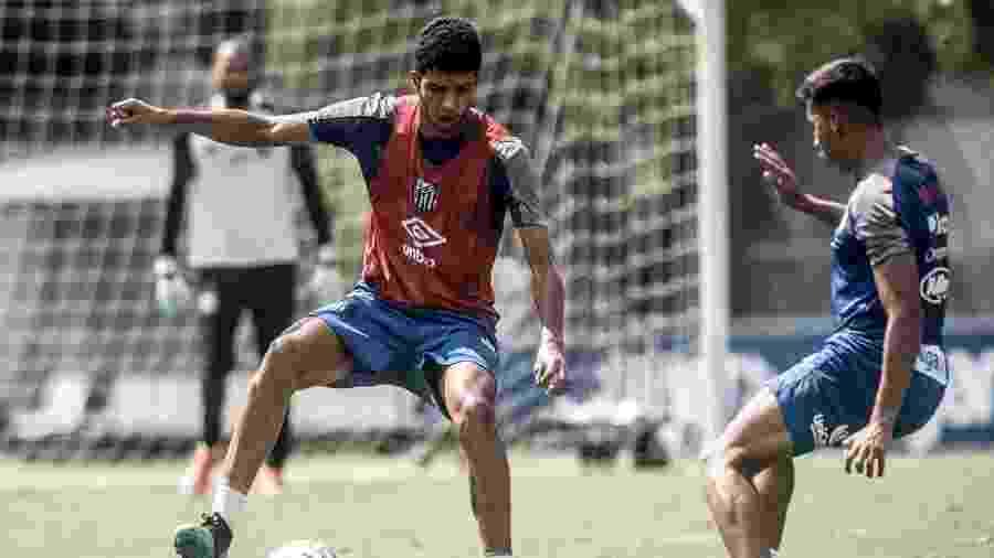 Kaique Rocha, zagueiro do Santos - Ivan Storti/Santos FC