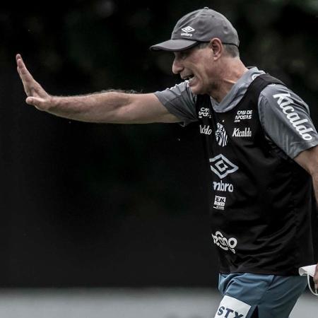 Ariel Holan está liberado para comandar o Santos no final de semana - Divulgação/Santos