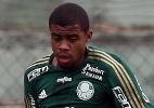 Fabio Menotti/Divulgação/Ag. Palmeiras