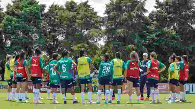 Palmeiras trabalhou na Academia de Futebol, treina hoje (12) no Allianz e se reforçou para 2020 - Priscila Pedroso/Palmeiras