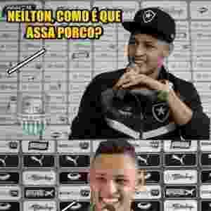 Torcida do Botafogo tira sarro de vitória sobre o Palmeiras - Reprodução