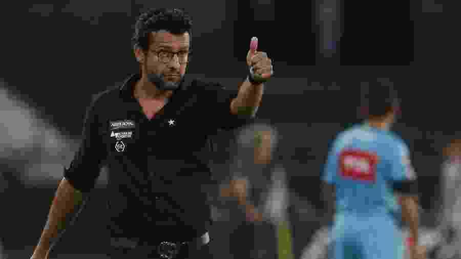 Alberto Valentim ainda tem trabalho pela frente para ficar satisfeito com desempenho do Botafogo - Vitor Silva/Botafogo