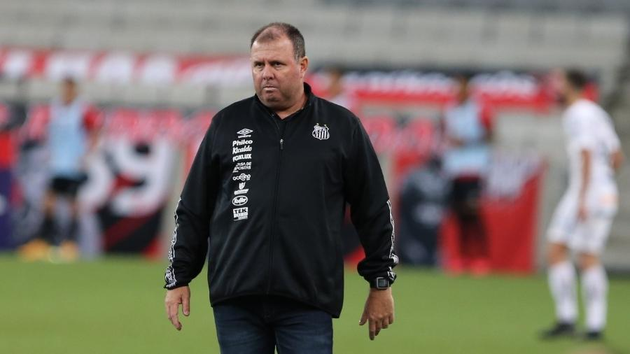 Marcelo Fernandes comandou o Santos interinamente hoje - Geraldo Bubniak/Santos FC