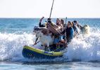 """""""Mééé!"""" Instrutor faz sucesso com crianças ao levar bode em aulas de surfe - Mike Blake/REUTERS"""