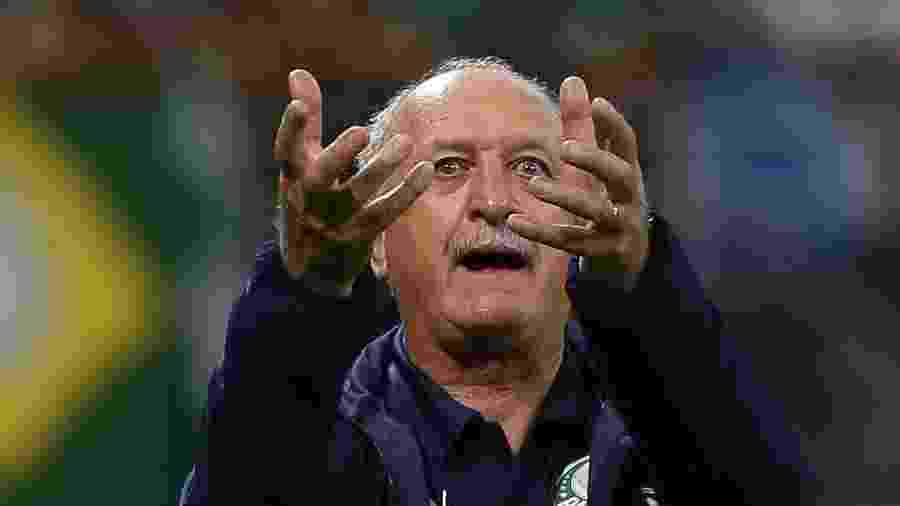 Palmeiras de Felipão está invicto há 30 jogos pelo Campeonato Brasileiro - Cesar Greco/Ag. Palmeiras/Divulgação