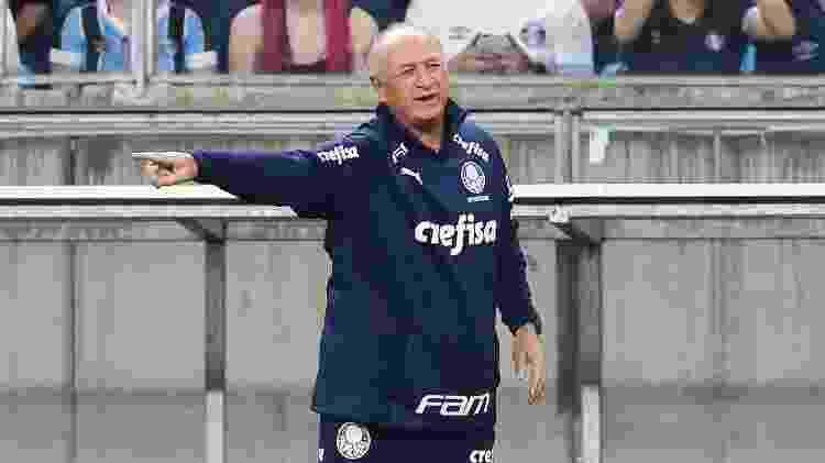 Felipão vive momento turbulento na temporada do Palmeiras - Pedro H. Tesch/AGIF