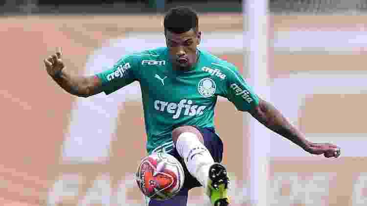 Juninho Palmeiras - Cesar Greco/Ag. Palmeiras/Divulgação - Cesar Greco/Ag. Palmeiras/Divulgação