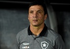 Botafogo tenta melhor a eficiência do ataque para escapar do rebaixamento - Vitor Silva/SSPress/Botafogo