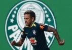 Pedro Martins/MowaPress