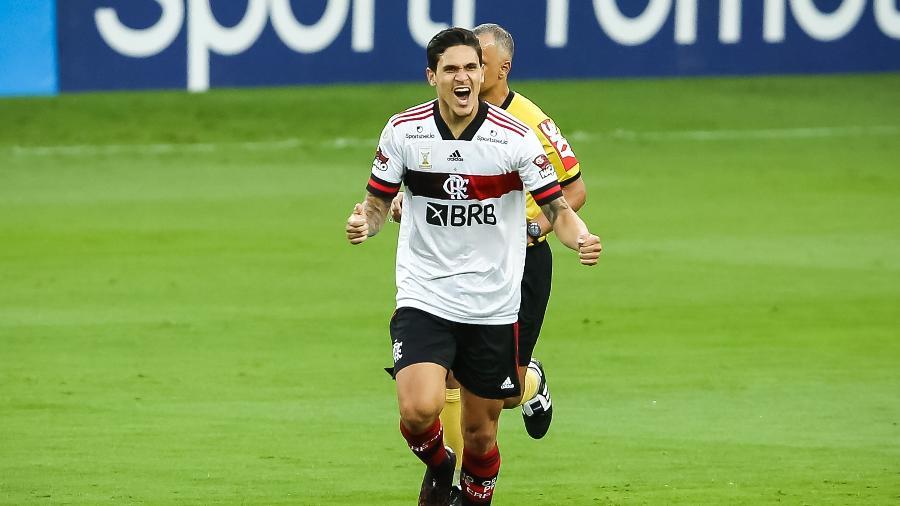 Pedro comemora o gol do Flamengo contra o Internacional no Campeonato Brasileiro - Pedro H. Tesch/AGIF