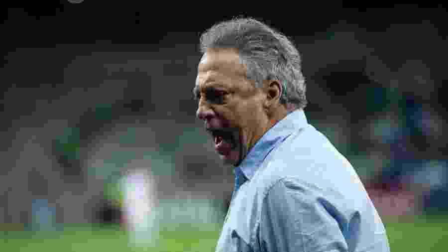 Técnico Abel Braga, do Cruzeiro, se anima com sequência positiva da equipe no Brasileirão - Bruno Haddad/Cruzeiro