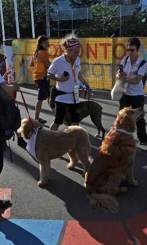 Cães terapeutas chegam para a Vila do Pan para fazer seu trabalho junto aos atletas