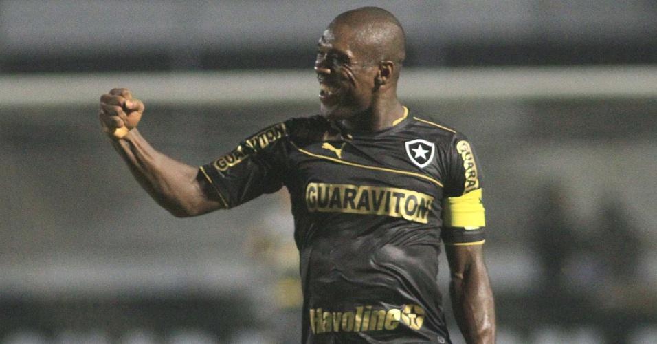 Seedorf comemora gol marcado pelo Botafogo contra a Ponte Preta no Campeonato Brasileiro
