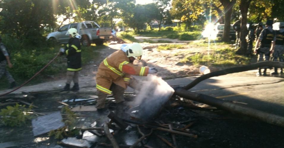 27.jun.2013 - Bombeiros apagam árvore que foi queimada em Fortaleza