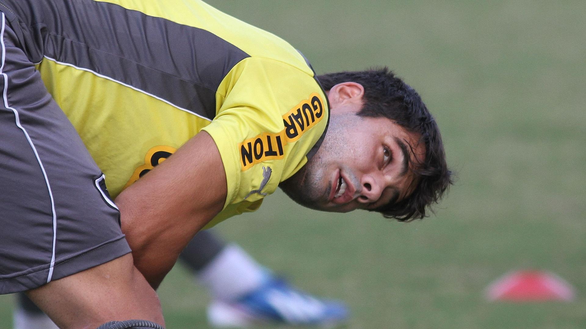 Henrique perdeu espaço no Botafogo e voltou ao banco de reservas