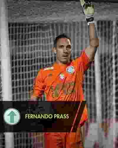 O goleiro alviverde fez boas atuações e conquistou definitivamente a posição, além de ter sido um dos líderes do elenco na vitoriosa campanha - Rodrigo Capote/UOL
