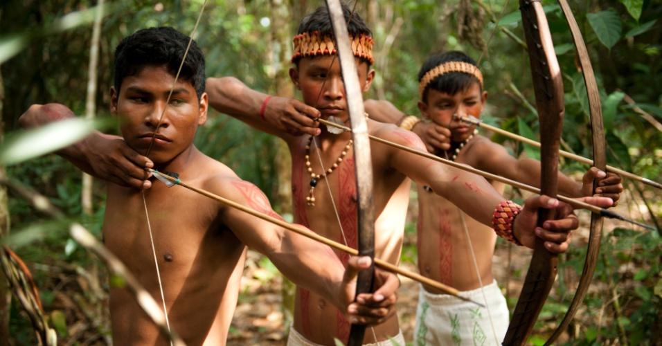 Índios foram selecionados dentro de tribos na Amazônia